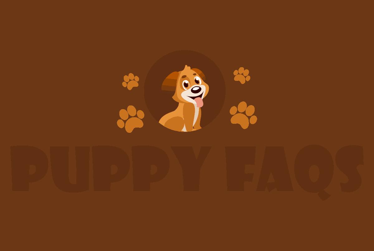 Puppy FAQS
